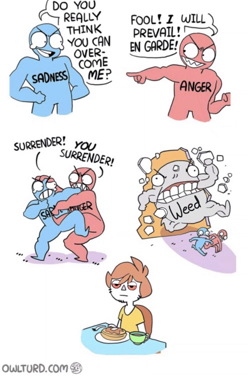 Cartoon - DO YOU REALLY THINK YOU CAN OVER- COME ME? FOOL! I WILL PREVAIL! EN GARDE! SADNESS ANGER SURRENDER! YOU SURRENDER! SAR GER R Weed OWLTURD.COM