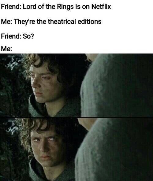 Text - Friend: Lord of the Rings is on Netflix Me: They're the theatrical editions Friend: So? Me:
