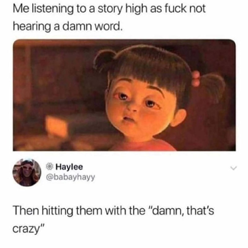 """Text - Me listening to a story high as fuck not hearing a damn word. * Haylee @babayhayy Then hitting them with the """"damn, that's crazy"""""""