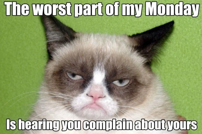 Cat - The worst part of my Monday Is hearing you complain about yourS