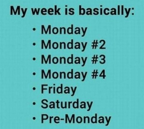 Text - My week is basically: • Monday Monday #2 • Monday #3 • Monday #4 • Friday • Saturday Pre-Monday