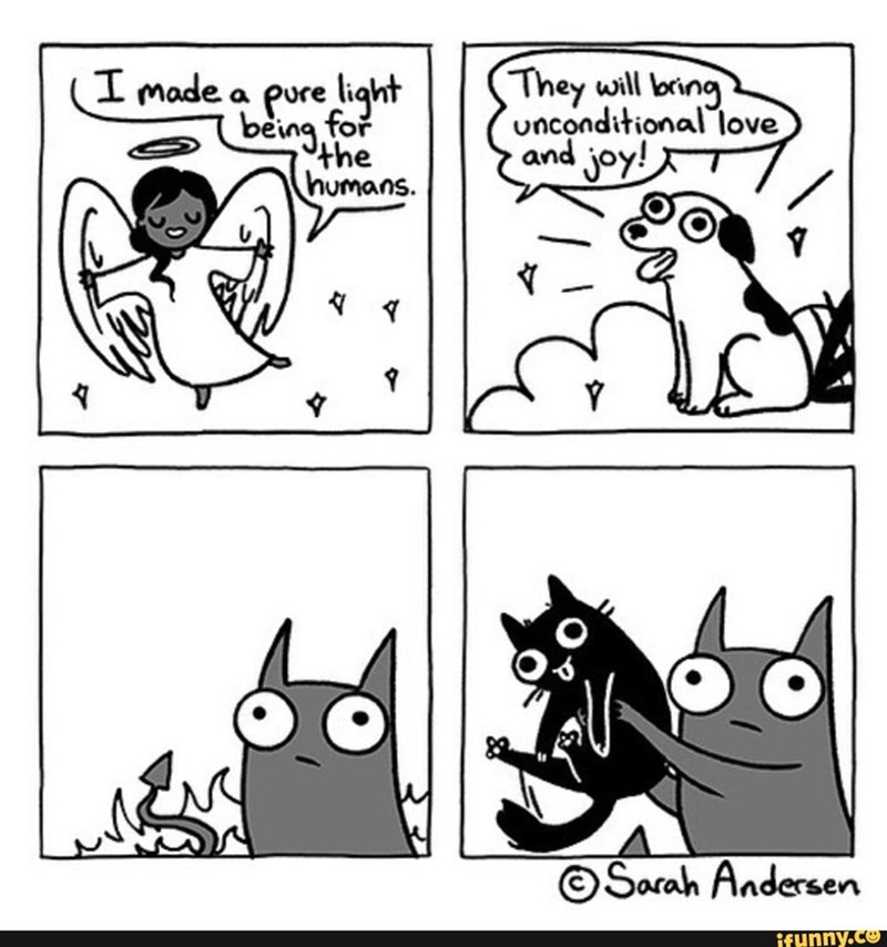 White - I made a pure light being for the humans. They will bring unconditional love and joy! ©Sarah Andersen ifunny.co