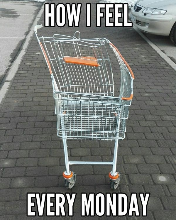 Shopping cart - HOW I FEEL EVERY MONDAY