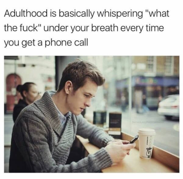 """Text - Adulthood is basically whispering """"what the fuck"""" under your breath every time you get a phone call"""