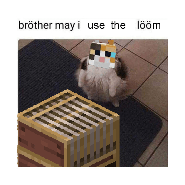 Photo caption - bröther may i use the lööm