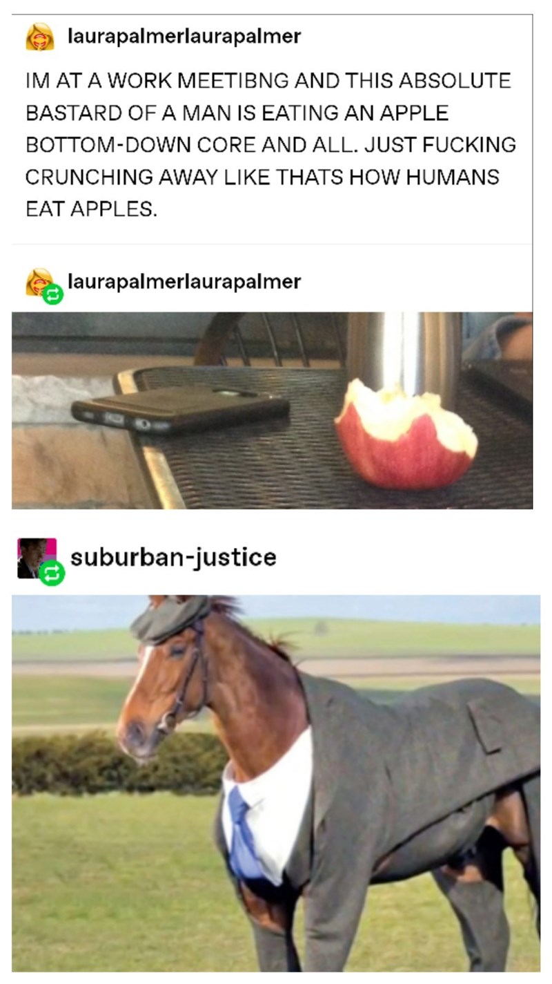Horse - laurapalmerlaurapalmer IM AT A WORK MEETIBNG AND THIS ABSOLUTE BASTARD OFA MAN IS EATING AN APPLE BOTTOM-DOWN CORE AND ALL. JUST FUCKING CRUNCHING AWAY LIKE THATS HOW HUMANS EAT APPLES. laurapalmerlaurapalmer suburban-justice