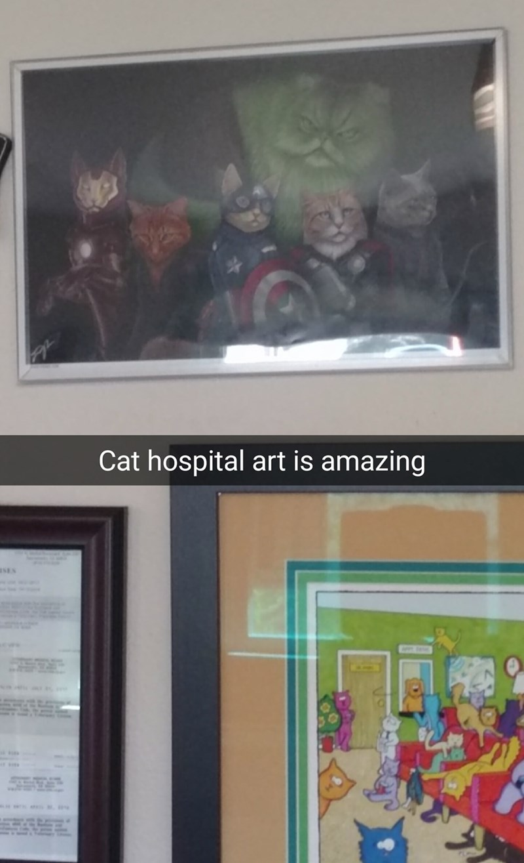 Room - Cat hospital art is amazing aSES