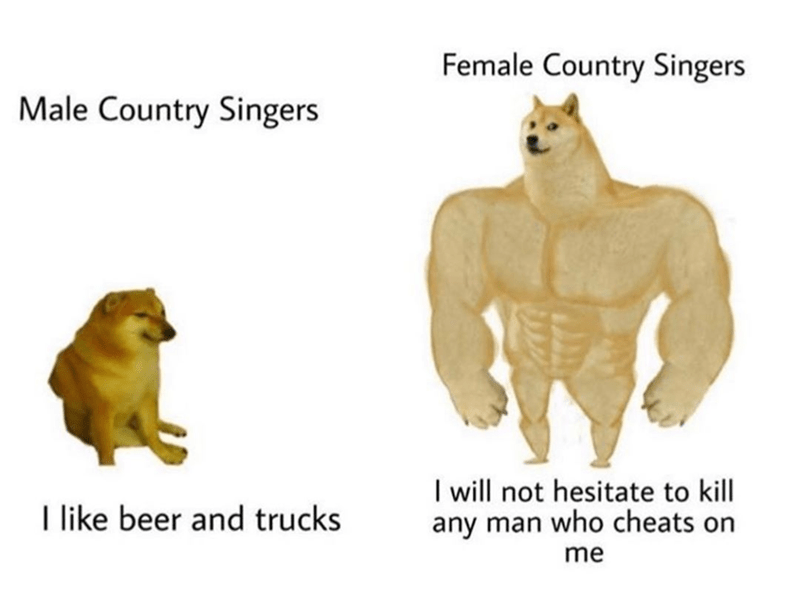 funny meme about female country singers being scarier than male country singers, carrie underwood | swole doge vs cheems Male Country Singers I like beer and trucks Female Country Singers I will not hesitate to kill any man who cheats on me