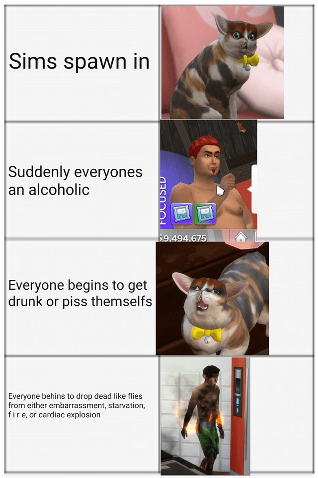 Cat - Sims spawn in Suddenly everyones an alcoholic $9.494.675 Everyone begins to get drunk or piss themselfs Everyone behins to drop dead like flies from either embarrassment, starvation, fire, or cardiac explosion