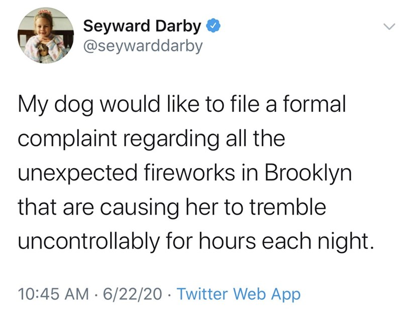 Text - Seyward Darby @seywarddarby My dog would like to file a formal complaint regarding all the unexpected fireworks in Brooklyn that are causing her to tremble uncontrollably for hours each night. 10:45 AM · 6/22/20 · Twitter Web App