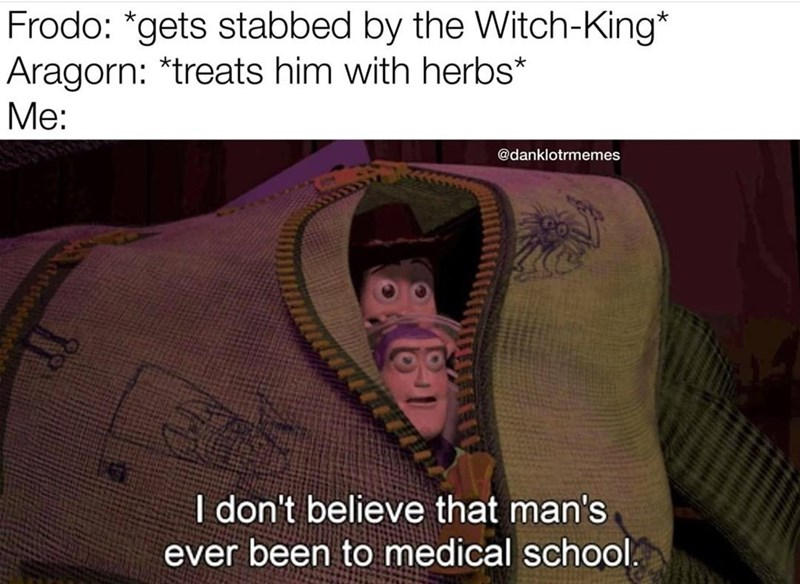Text - Frodo: *gets stabbed by the Witch-King* Aragorn: *treats him with herbs* Me: @danklotrmemes I don't believe that man's ever been to medical school.