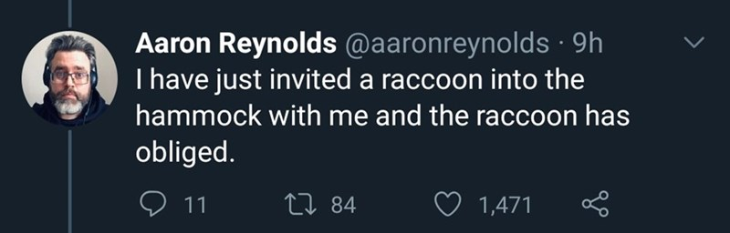 Text - Aaron Reynolds @aaronreynolds · 9h I have just invited a raccoon into the hammock with me and the raccoon has obliged. O 11 27 84 1,471