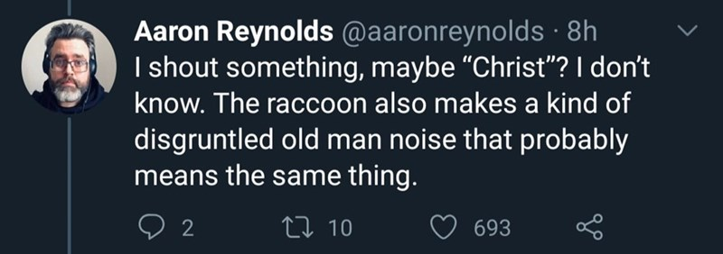 """Text - Aaron Reynolds @aaronreynolds · 8h I shout something, maybe """"Christ""""? I don't know. The raccoon also makes a kind of disgruntled old man noise that probably means the same thing. 2 27 10 693"""