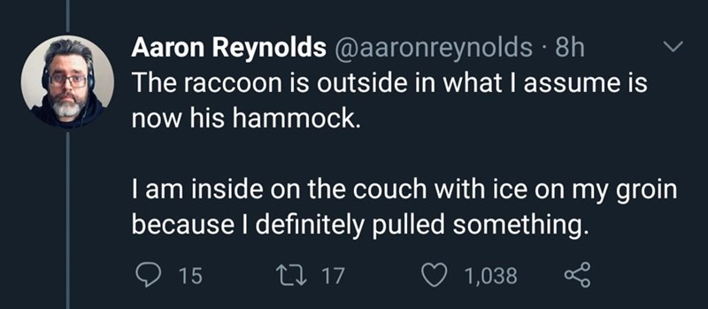 Text - Aaron Reynolds @aaronreynolds · 8h The raccoon is outside in what I assume is now his hammock. I am inside on the couch with ice on my groin because I definitely pulled something. 9 15 27 17 1,038