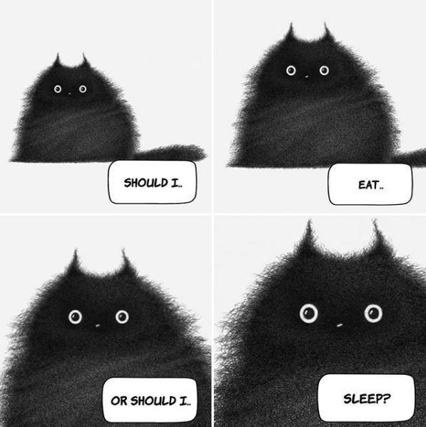 Black - 0. 0 SHOULD I. EAT. OR SHOULD I. SLEEP?