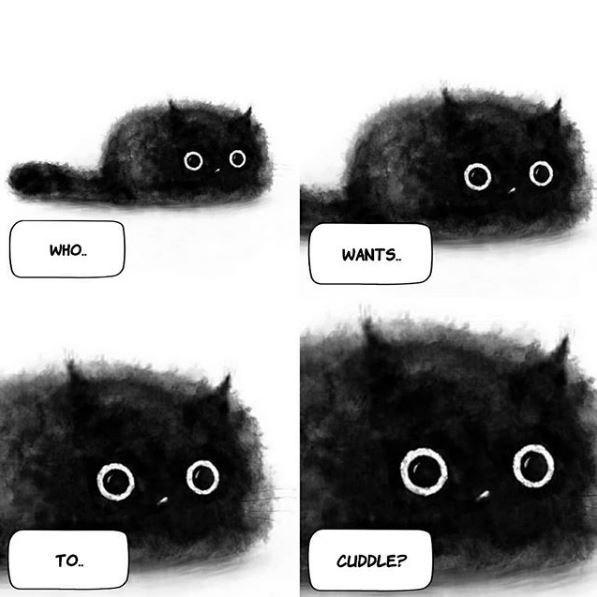 Black cat - O,0 O, 0 WHO. WANTS. O, 0 O,0 TO. CUDDLE?