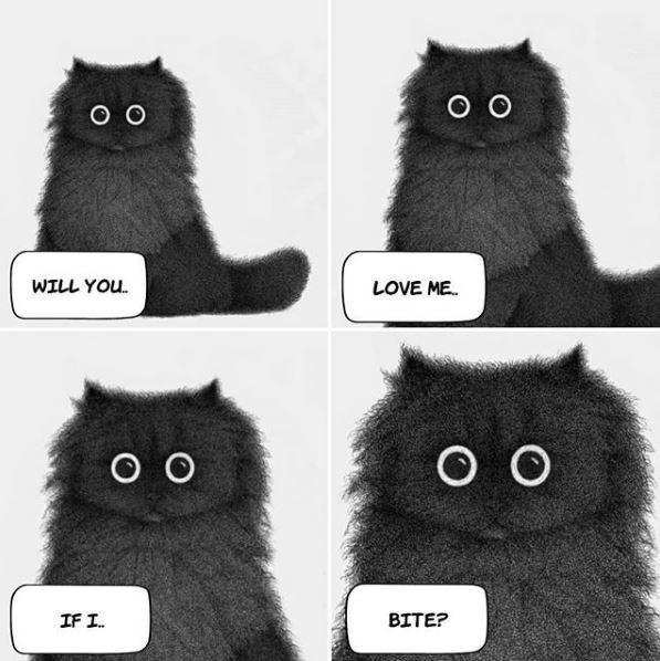 Cat - O O O O WILL YOU. LOVE ME. O O о IF I. BITE?