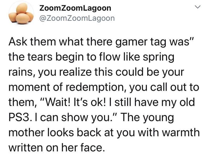 """Text - ZoomZoomLagoon @ZoomZoomLagoon Ask them what there gamer tag was"""" the tears begin to flow like spring rains, you realize this could be your moment of redemption, you call out to them, """"Wait! It's ok! I still have my old PS3. I can show you."""" The young mother looks back at you with warmth written on her face. >"""
