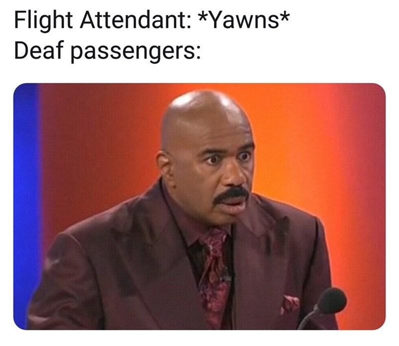 Text - Flight Attendant: *Yawns* Deaf passengers: