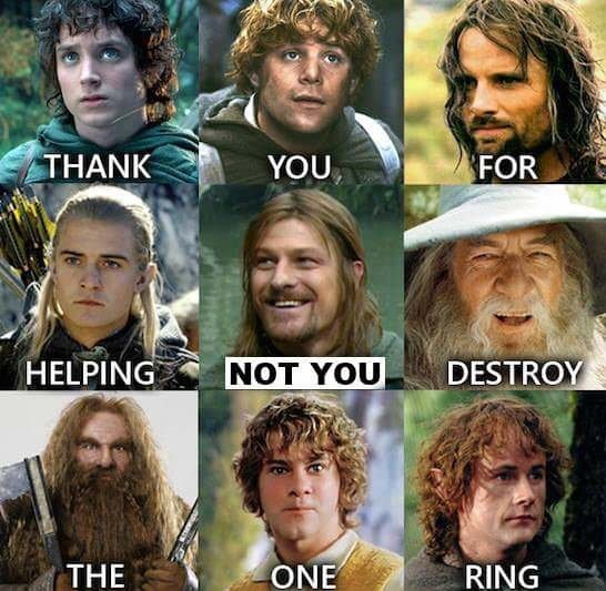 Facial hair - THANK YOU FOR HELPING NOT YOU DESTROY THE ONE RING