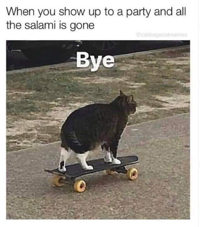 Skateboarding - When you show up to a party and all the salami is gone @cabbagecatmemes Bye