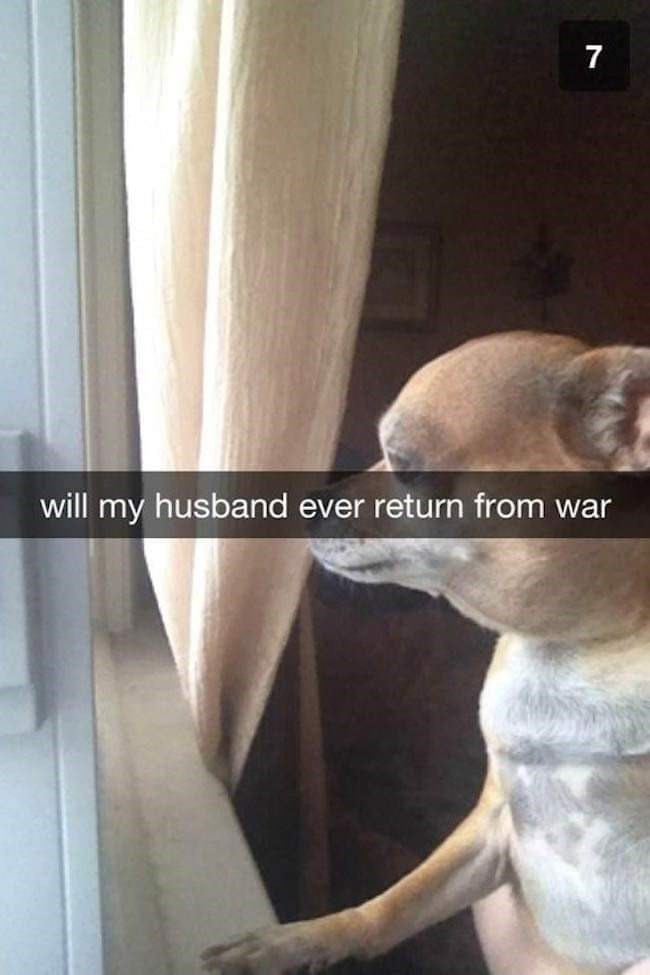 Room - 7 will my husband ever return from war
