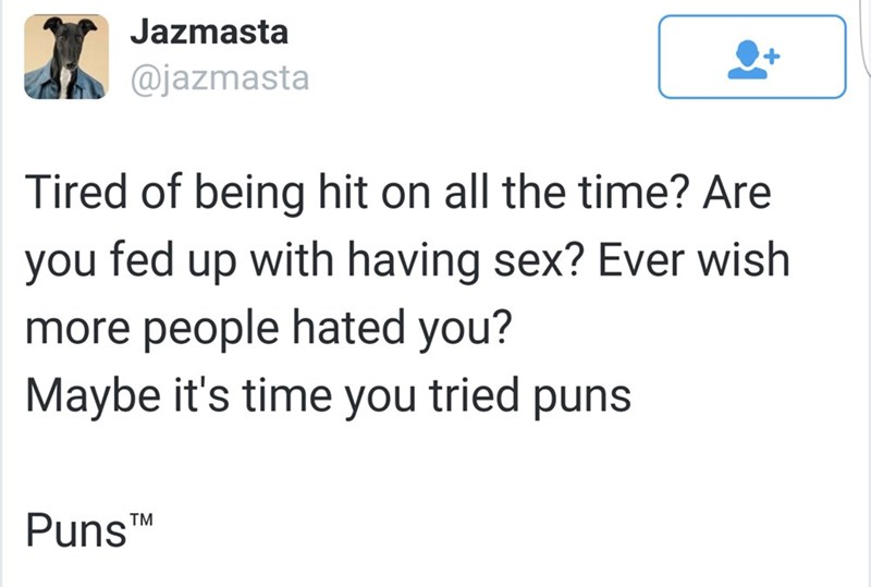 """Text - Jazmasta @jazmasta Tired of being hit on all the time? Are you fed up with having sex? Ever wish more people hated you? Maybe it's time you tried puns Puns"""" TM"""