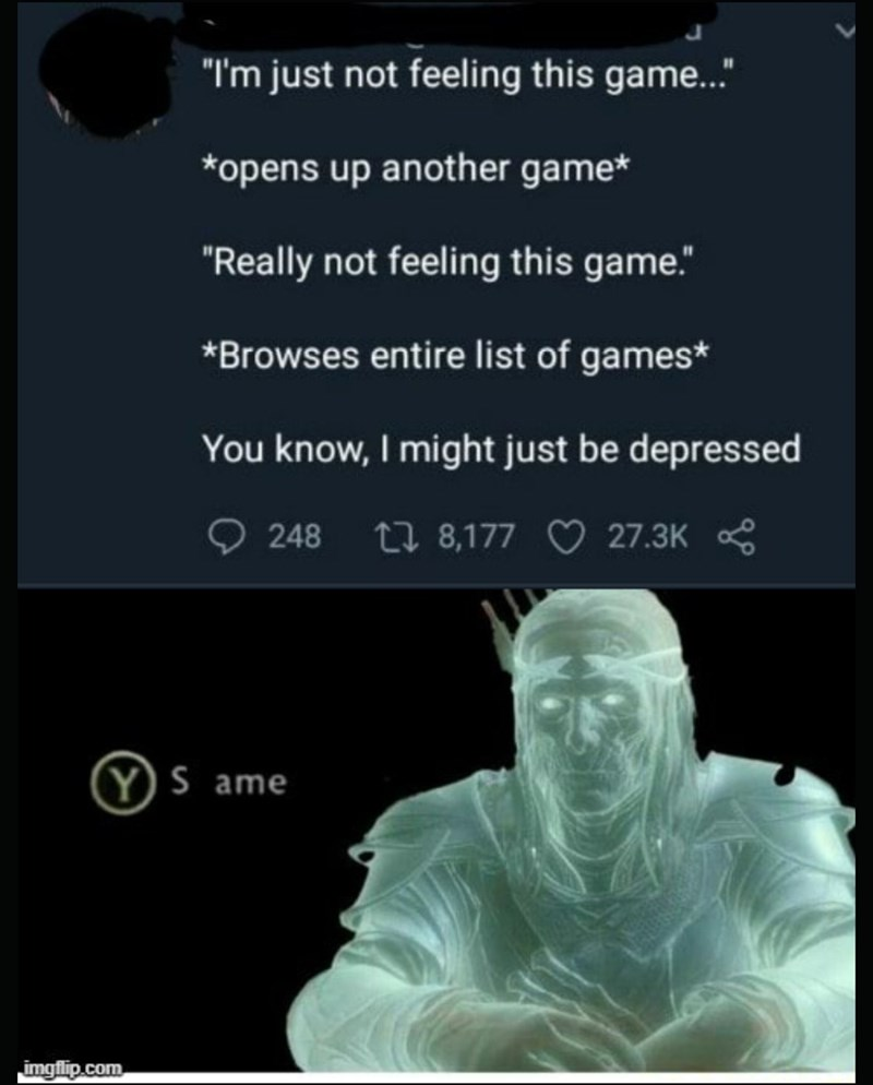 """Text - """"I'm just not feeling this game.. *opens up another game* """"Really not feeling this game."""" *Browses entire list of games* You know, I might just be depressed O 248 27 8,177 O 27.3K YS ame imgflip.com"""