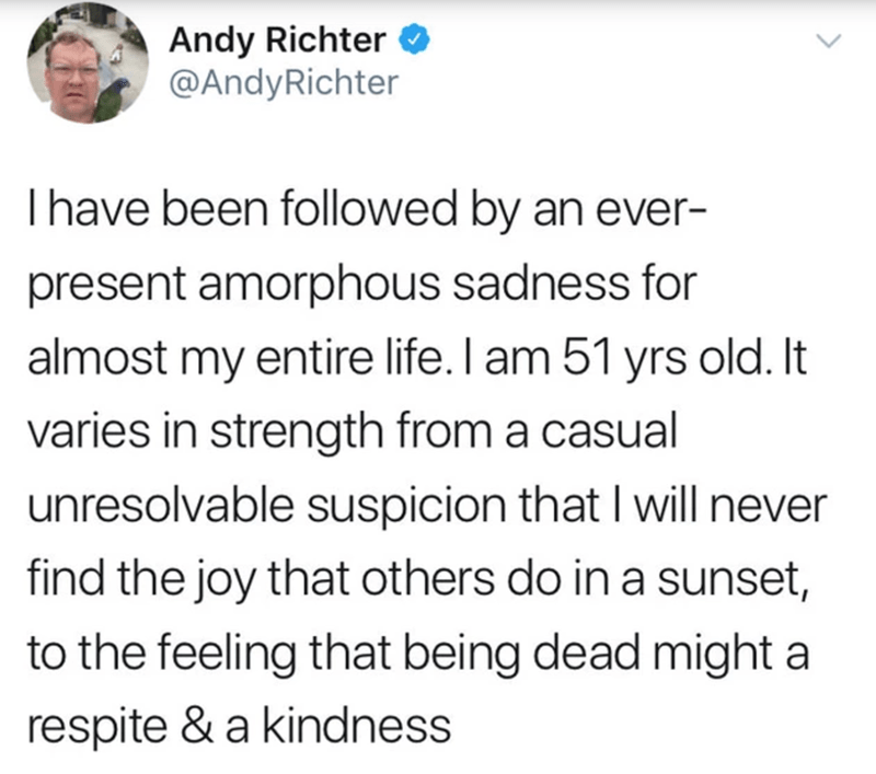 Text - Andy Richter O @AndyRichter Thave been followed by an ever- present amorphous sadness for almost my entire life. I am 51 yrs old. It varies in strength from a casual unresolvable suspicion that I will never find the joy that others do in a sunset, to the feeling that being dead might a respite & a kindness
