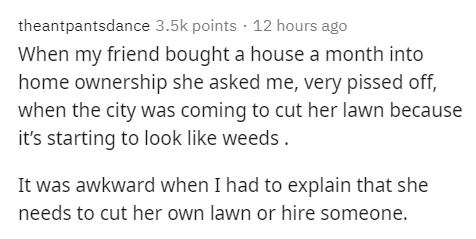 Text - theantpantsdance 3.5k points · 12 hours ago When my friend bought a house a month into home ownership she asked me, very pissed off, when the city was coming to cut her lawn because it's starting to look like weeds . It was awkward when I had to explain that she needs to cut her own lawn or hire someone.