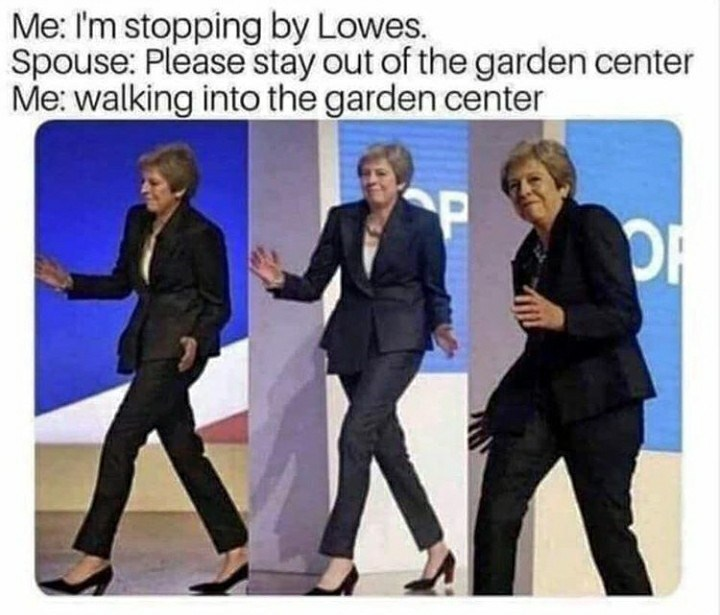 Suit - Me: I'm stopping by Lowes. Spouse: Please stay out of the garden center Me: walking into the garden center OF