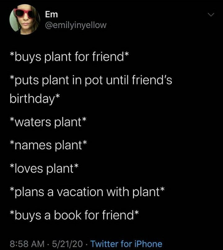 Text - Em @emilyinyellow *buys plant for friend* *puts plant in pot until friend's birthday* *waters plant* *names plant* *loves plant* *plans a vacation with plant* *buys a book for friend* 8:58 AM - 5/21/20 · Twitter for iPhone