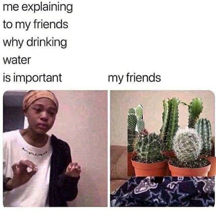 Cactus - me explaining to my friends why drinking water is important my friends