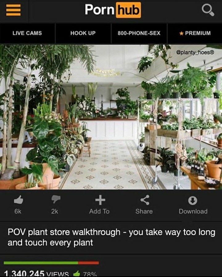 Product - Porn hub LIVE CAMS НОOK UP 800-PHONE-SEX * PREMIUM @planty_hoes® + 6k 2k Add To Share Download POV plant store walkthrough - you take way too long and touch every plant 1.340.245 VIEWS. 78%