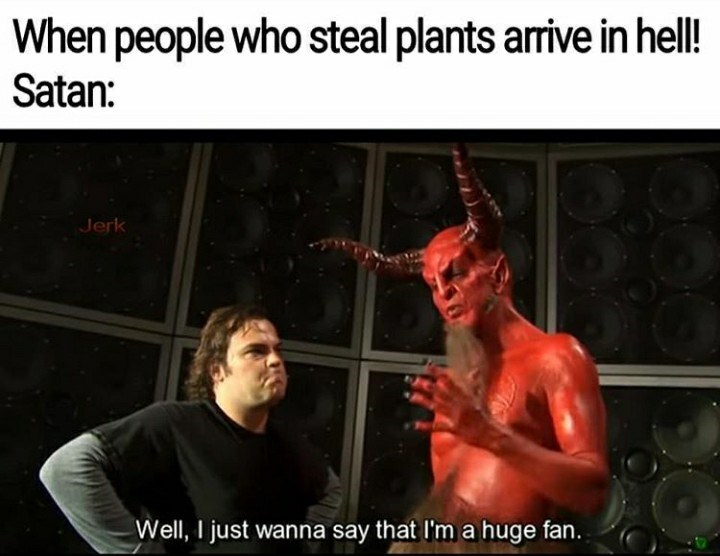 Fictional character - When people who steal plants arrive in hell! Satan: Jerk Well, I just wanna say that I'm a huge fan.