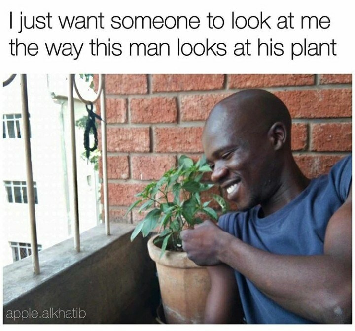 Text - I just want someone to look at me the way this man looks at his plant apple.alkhatib