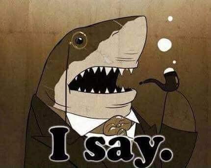 Fish - I say.