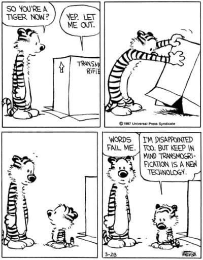 Cartoon - SO YOU'RE A TIGER NOW? YEP. LET ME OUT. TRANSM RIFE OI7 Universal Pres Syndicale WORDS IM DISAPPOINTED FAIL ME. TOO, BUT KEEP IN MIND TRANSMOGRI- FICATION IS A NEW TECHNOLOGY. 3-28