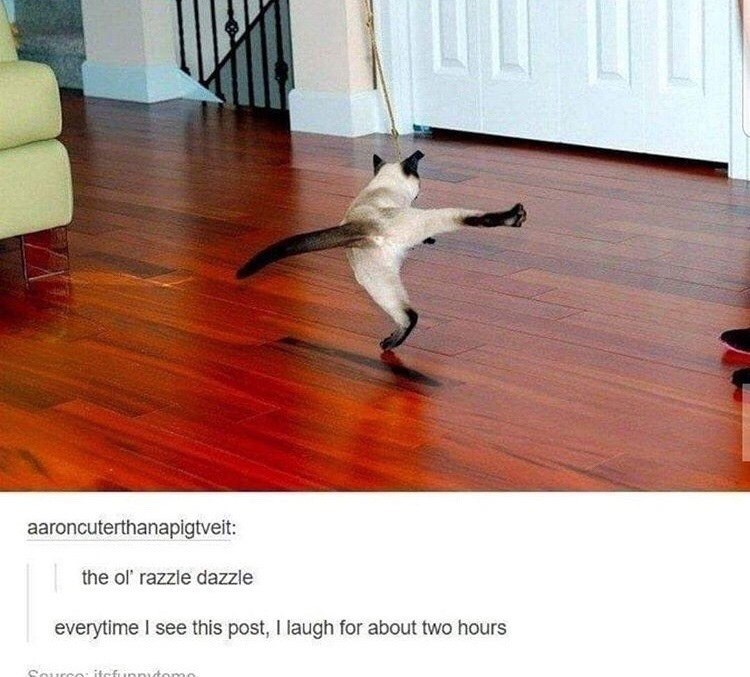 Floor - aaroncuterthanapigtveit: the ol' razzle dazzle everytime I see this post, I laugh for about two hours Ource: itcfunnytomo