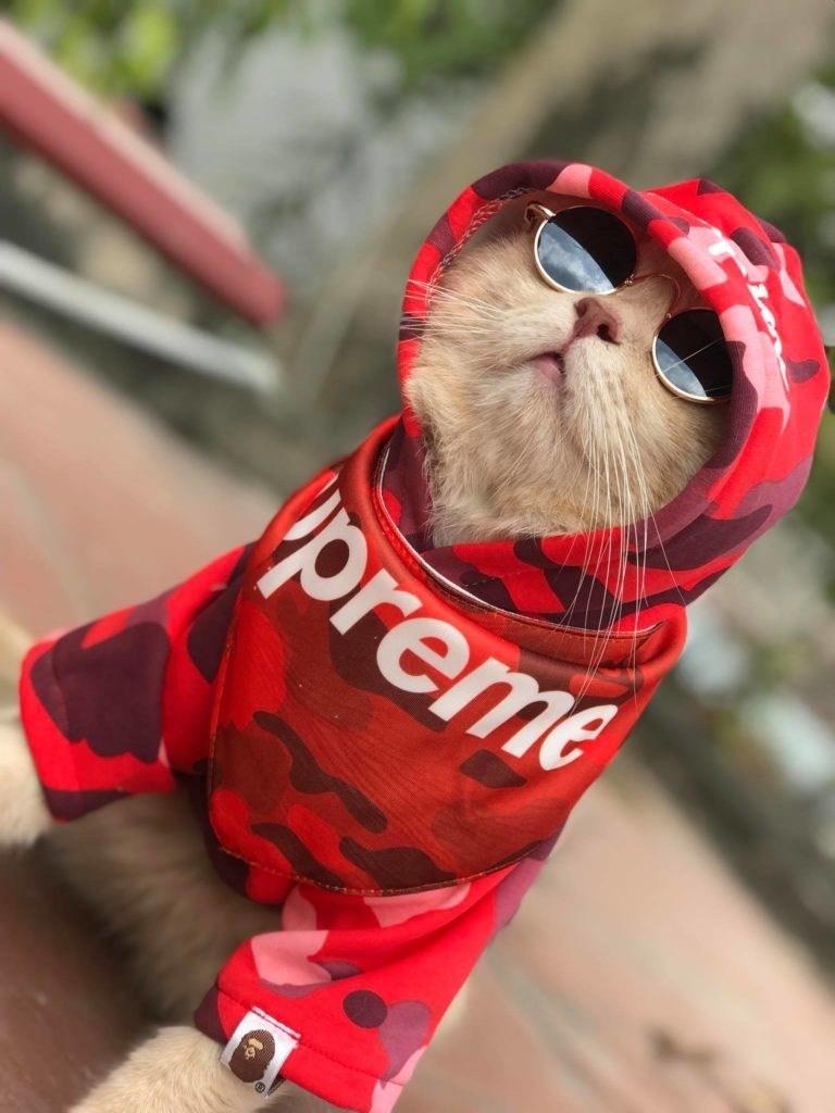 Red - preme