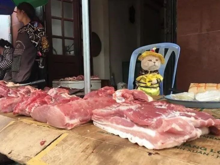 Red meat - NG L CUÂN -
