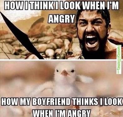 Cat - Internet meme - HOWITHINKILOOK WHEN I'M ANGRY HOW MY BOYFRIEND THINKS I LOOK WHEN I'MANGRY Funnieyt Mamay
