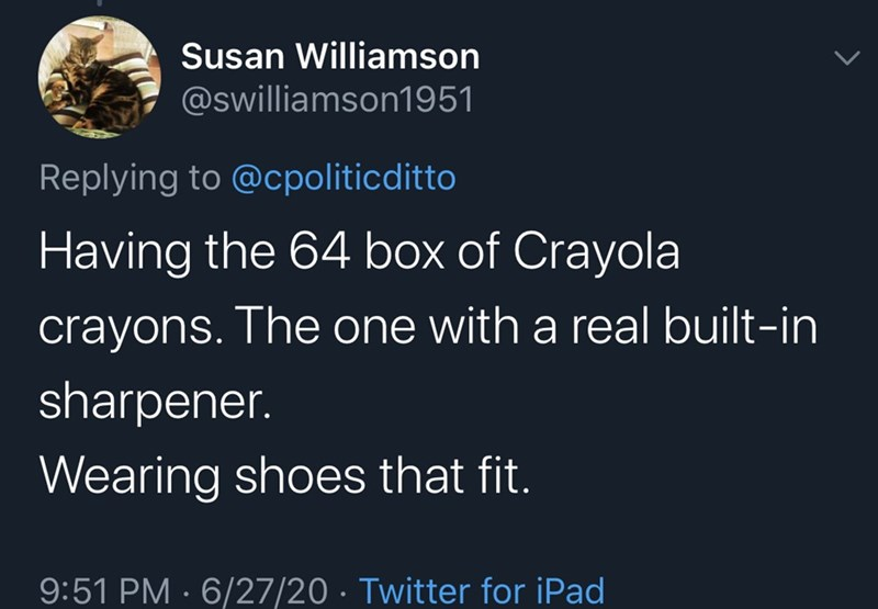 Text - Susan Williamson @swilliamson1951 Replying to @cpoliticditto Having the 64 box of Crayola crayons. The one with a real built-in sharpener. Wearing shoes that fit. 9:51 PM · 6/27/20 · Twitter for iPad
