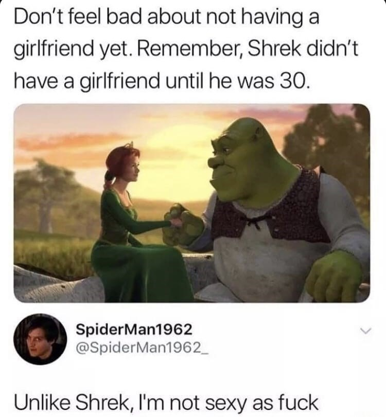 Text - Don't feel bad about not having a girlfriend yet. Remember, Shrek didn't have a girlfriend until he was 30. SpiderMan1962 @SpiderMan1962_ Unlike Shrek, I'm not sexy as fuck