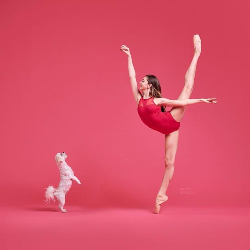 Dancer - PRATT KREIDICH