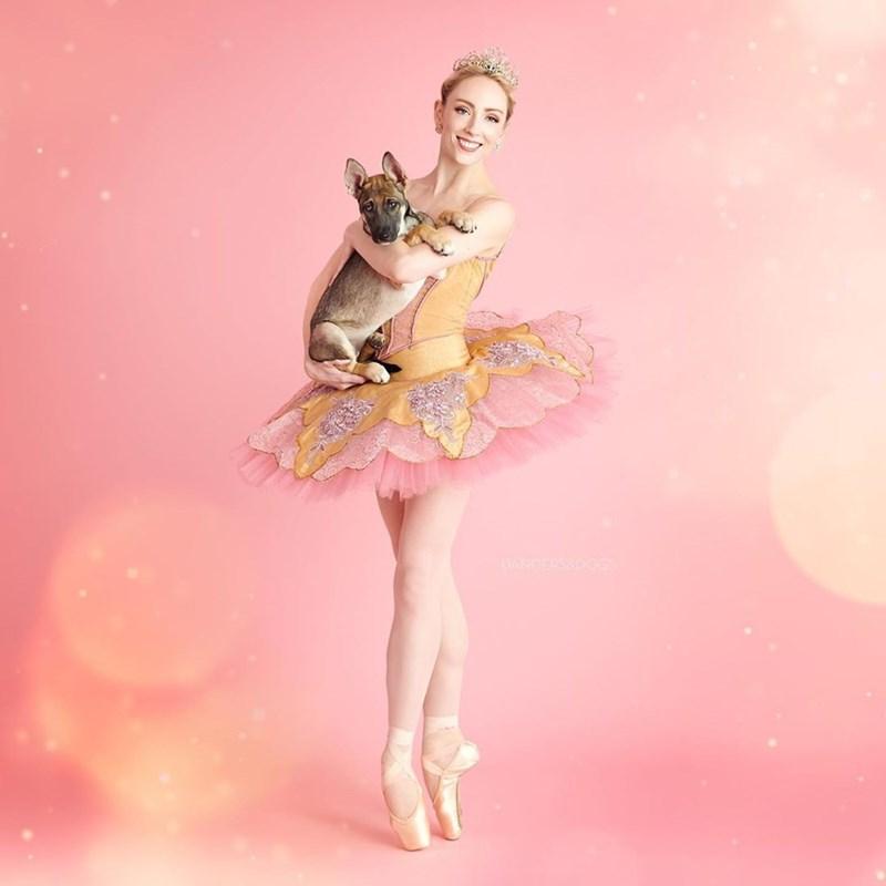 Ballet dancer - DANCERSRDOGS