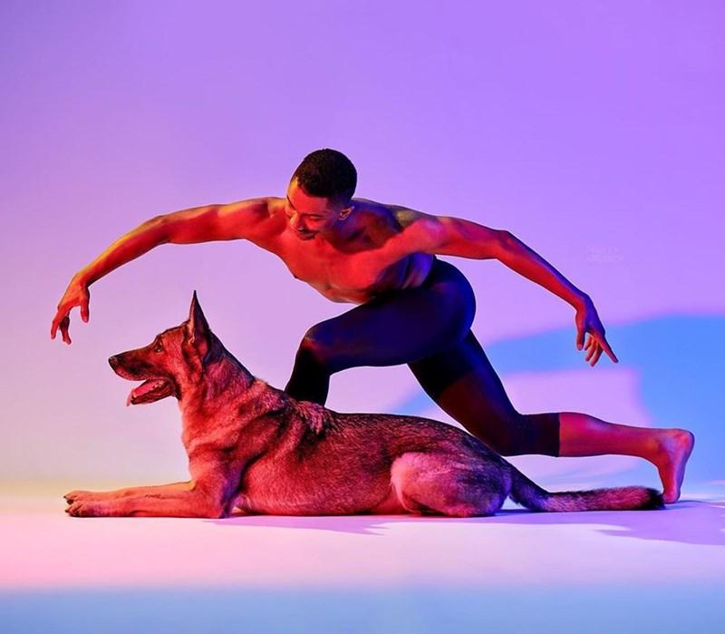 Dancer - KREIDIC