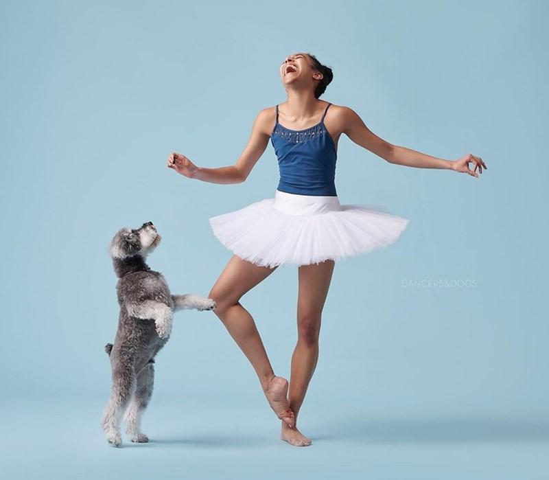 Ballet tutu - DANCERS&DOGS