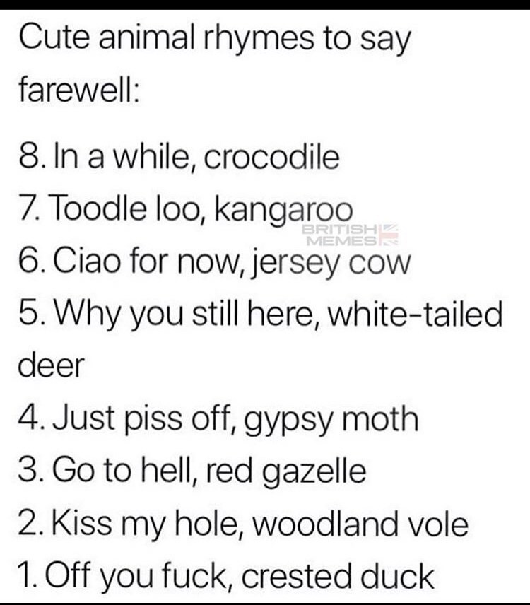 Text - Cute animal rhymes to say farewell: 8. In a while, crocodile 7. Toodle loo, kangaroo 6. Ciao for now, jersey cow BRITISHz MEMES 5. Why you still here, white-tailed deer 4. Just piss off, gypsy moth 3. Go to hell, red gazelle 2. Kiss my hole, woodland vole 1. Off you fuck, crested duck