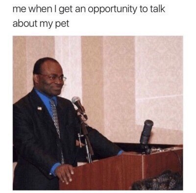 Lecture - me when I get an opportunity to talk about my pet